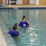 nitro swim fort wayne swim lessons
